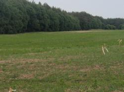 Готовый проект застройки 22га на 320 домов -35 км от окружной г.Киева