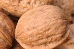Ищу инвестора ореховый бизнес